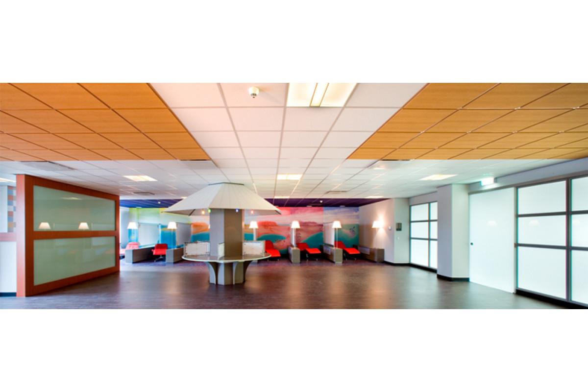 Цветной потолок «Армстронг»